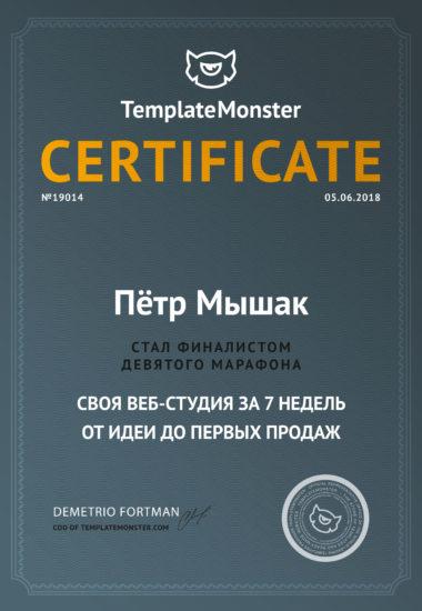 Web Studio certificate